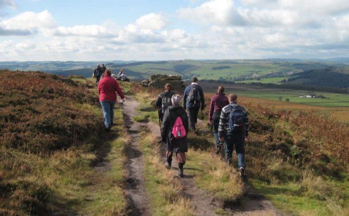 National park walkers follow a path through ferns